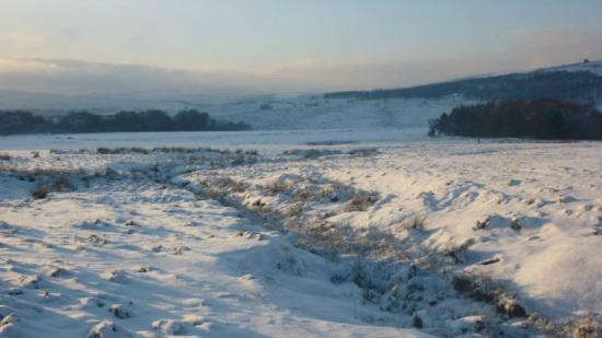 Longshaw Estate: Snow on the meadow