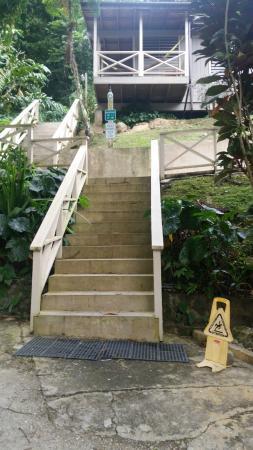 Casa Grande Mountain Retreat: Our staircase