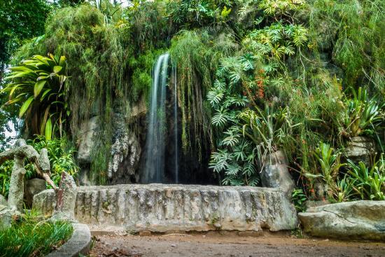 construir gruta jardim : construir gruta jardim:jardim: fotografía de Luz Square, Sao Paulo – TripAdvisor