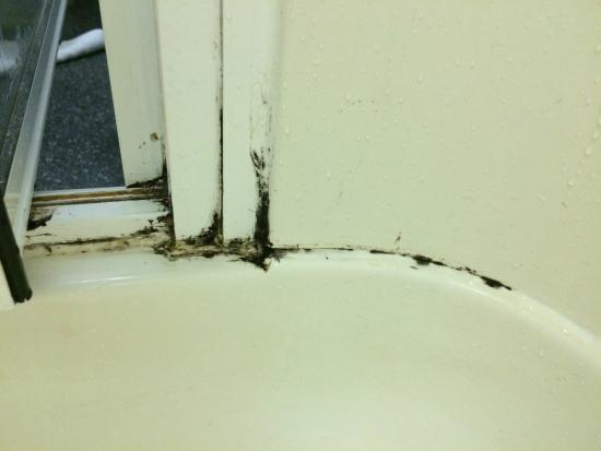 Best Western Nottingham Derby : Smelly mould in shower