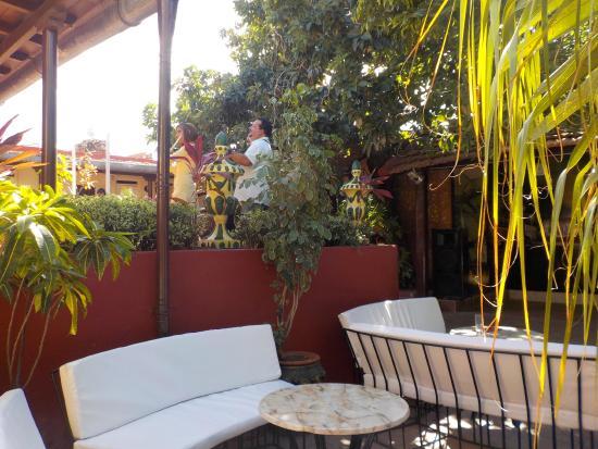 Plaza Mayor Restaurant: la terrasse