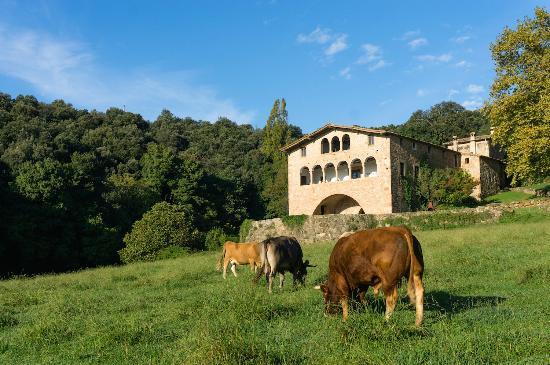 Casa Rural El Callis