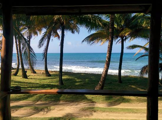 La Princesa de la Isla: View from the room