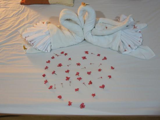 Acanto Boutique Hotel and Condominiums Playa del Carmen Mexico: This is what they provided to celebrate our Anniversary!