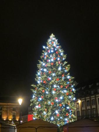Ibis Styles Strasbourg Centre Gare: Christmas Tree
