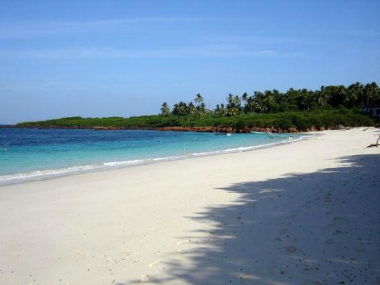 Pedasi, Panama: Isla Iguana