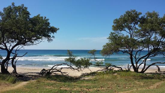 Hotel Playa Negra: Vista da praia em frente ao hotel