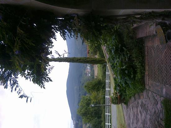 Hotel Ibarra: Vistas