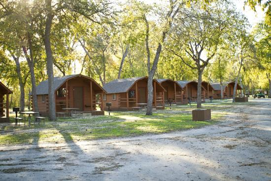 shaded camping cabins picture of san antonio koa