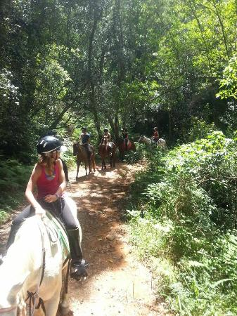 Garden Route Horse Trails