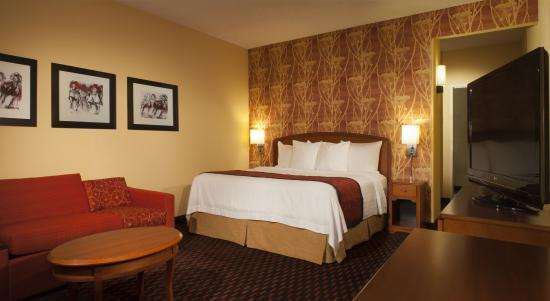 Courtyard Louisville Airport: King Guest Room