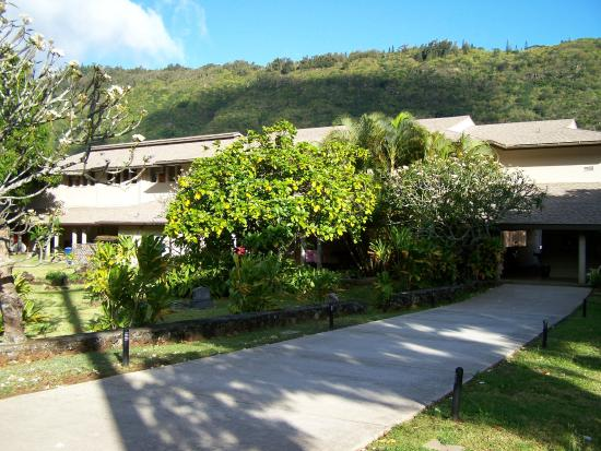 ‪Manoa Valley Theatre‬