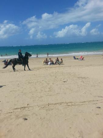 Mont Caribe Guesthouse: Beach near hotel