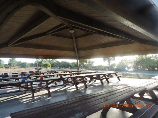 Picnic area - Picture of Lemon Bay Park, Englewood - TripAdvisor