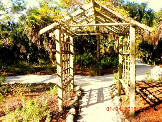 Lemon Bay Park: Trellis just at the entrance of one trail