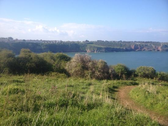 South Bay Holiday Park: the view from Sharkham Point