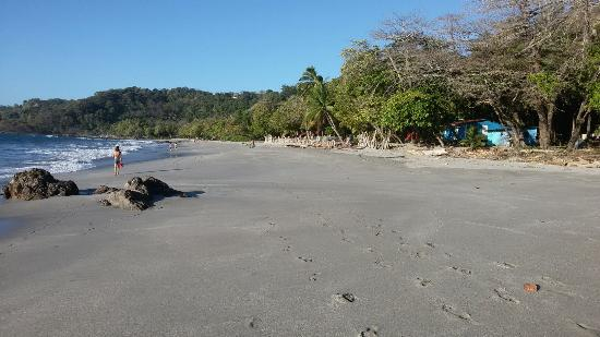 Hotel Luz de Mono: Playa a 100m del hotel