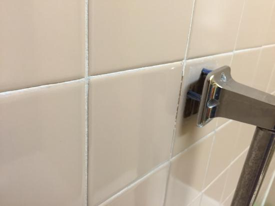 Quality Inn Conference Center: The loose shower bar in the shower. Yes I fell when I didn't notice this