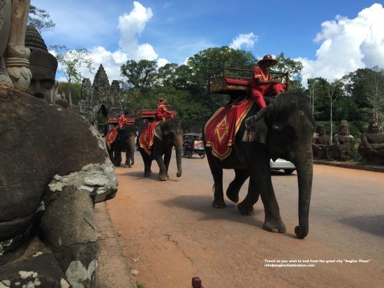 Angkor Destination Travel: 0011