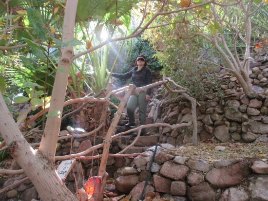 Botanical Garden Of Eilat : Inside of Eilat's rain forest