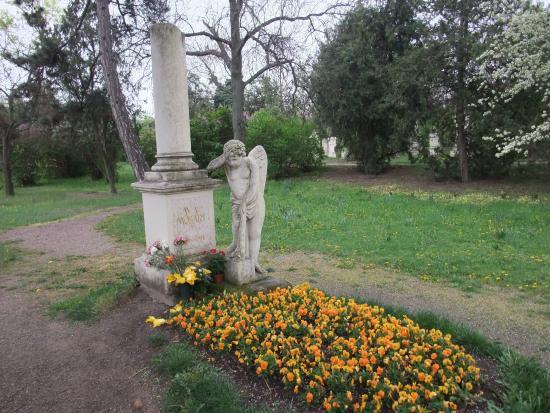 St Marxer Friedhof Wien Bewertungen Und Fotos