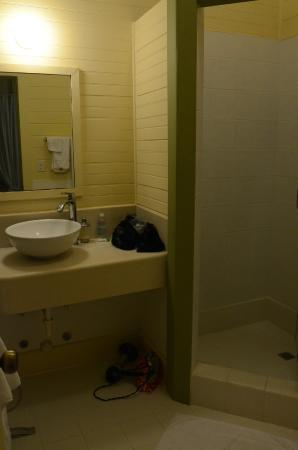 Canopy Bed and Breakfast : Bathroom for Room #3