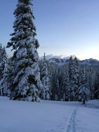 Norden, Californien: Overlooking Sugar Bowl Ski Resort