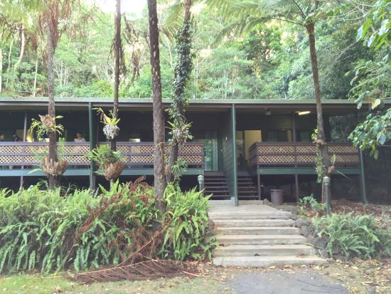 Chambers Wildlife Rainforest Lodges: We stayed in these rooms.