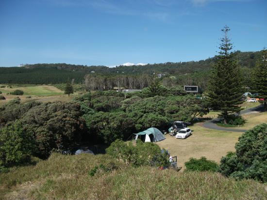Muriwai Motor Camp: Tent grounds