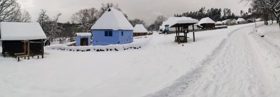 ASTRA Museum: Old village panorama
