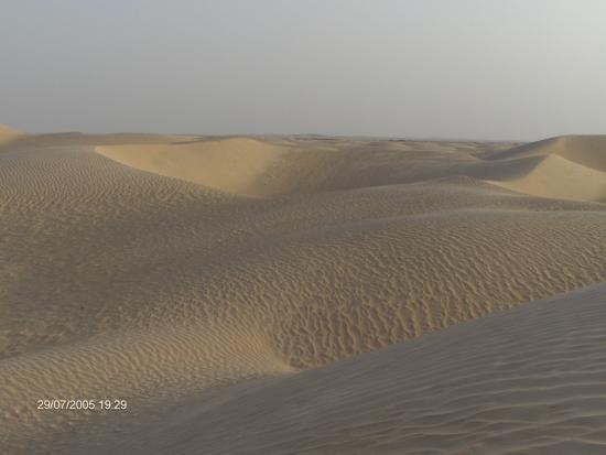 Sahara Desert: dune