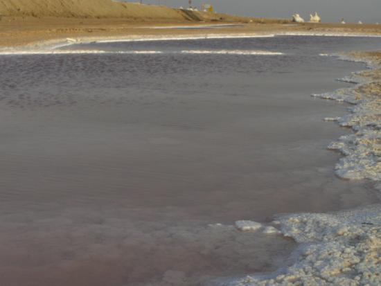 Kebili, Τυνησία: lago salato