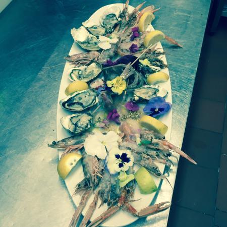 L 39 albero del mare viareggio avis restaurant num ro de t l phone et photos tripadvisor - Bagno maurizio viareggio ...