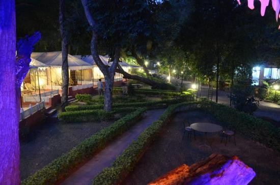 The Aravali Tent Resort: EVENING VIEW FROM TREE HOUSE