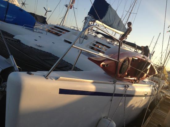 Baja Expeditions : catamarano