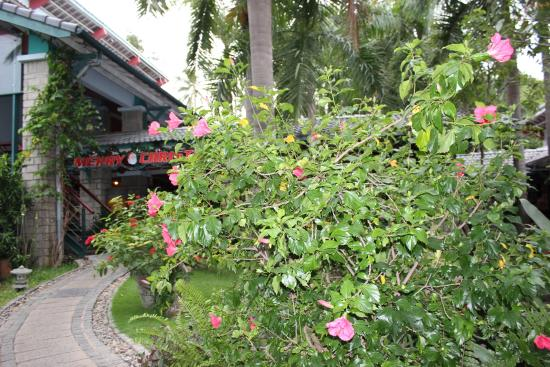 Hoang Ngoc Resort: Вход в ресторан