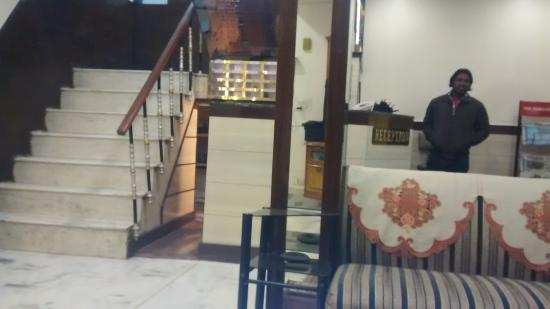 Woodland Deluxe: Reception area