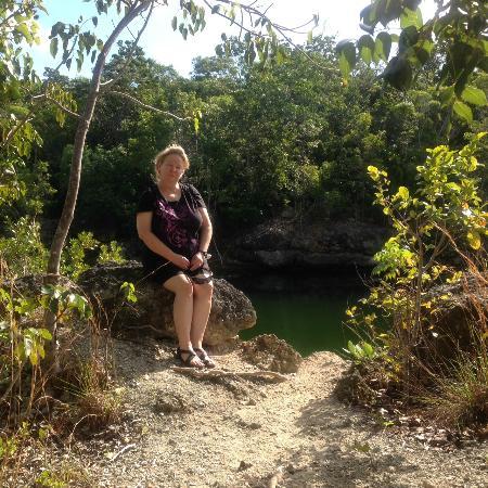Dagny Johnson Key Largo Hammock Botanical State Park : Dagney Johnson Hammock Botanical State Park Key Largo FL