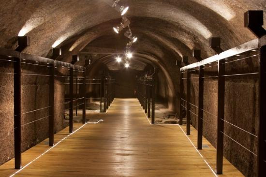 Museo Civico ed Enogastronomico,Le Cantine del Cardinale