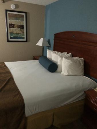 Best Western Plus Dayton Northwest : Bed