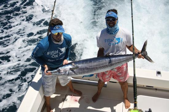 Fish On: 24 kg wahoo