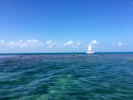 Isla Marisol Resort: Vue