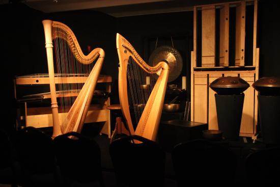 Luc Vanlaere Harpist : Concert stage
