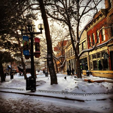 Local Table Tours: Downtown Pearl Street