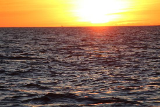 Yarmouth Port, MA: Good morning!
