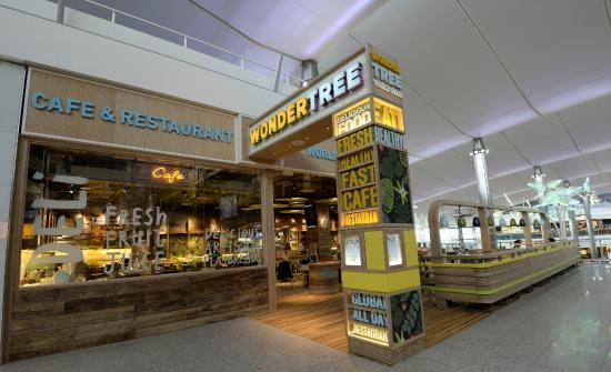 Wondertree Terminal 2