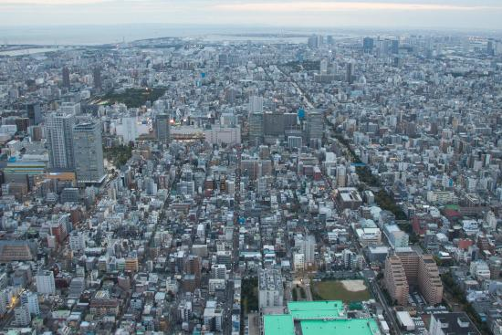 Днём - Picture of Tokyo City View Observation Deck (Roppongihills), Minato - ...