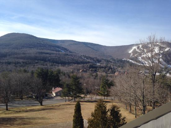Scribner's Catskills Lodge: View from room
