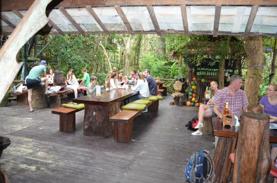 Khao Sok Tree House Resort: Breakfast area and outside dining