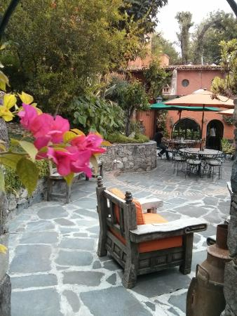 La Casa de Liza: Patio / breakfast area
